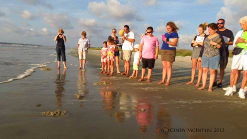 Nest Walk participants watch hatchling run to the sea