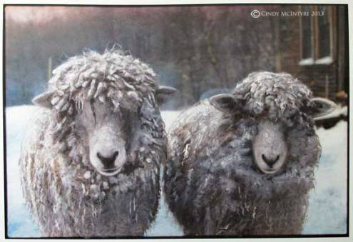 Two Sheep - an oldie but goodie on my new Etsy site