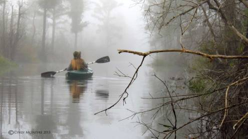 Paddling the Suwannee Canal in fog