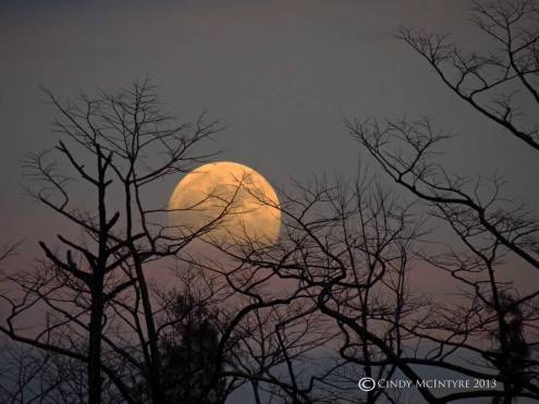 Sunset Moon - Nov. 16, 2013