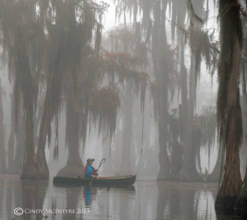 Canoeing-in-fog,-Banks-Lake-NWR,-GA-(23)-copy