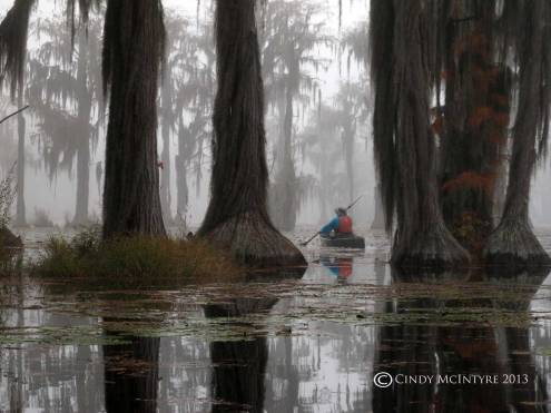Canoeing-in-fog,-Banks-Lake-NWR,-GA-(25)-copy