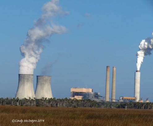 Crystal River Nuclear Power Plant