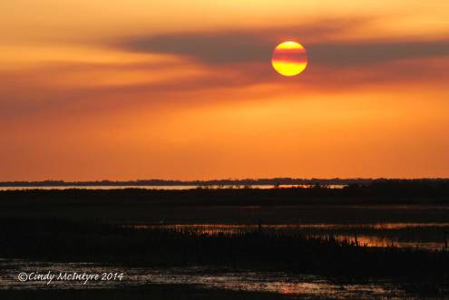 Sunset,-Joe-Overstreet-Landing,-Lk-Kissimmee-FL-(4)-copy-2