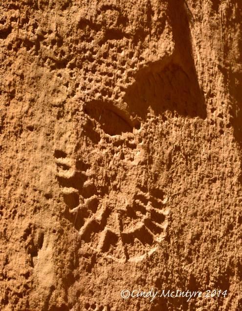 Pool Creek Petroglyphs
