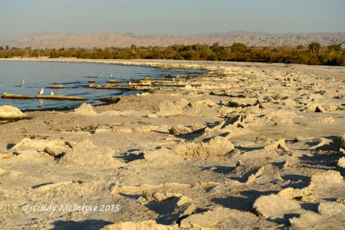 North shore, Salton Sea