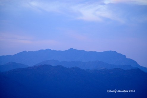 Mojave-Natl-Preserve,-Mid-Hills-area,-CA-(14)-copy