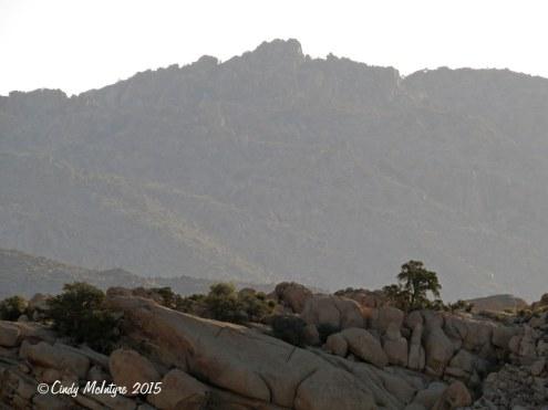 Barker-Dam-Trail,-Joshua-Tree-NP-CA-(4)-copy