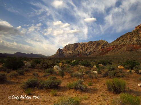 First-Creek-Trail,-Red-Rock-Canyon-NV-(10)-copy