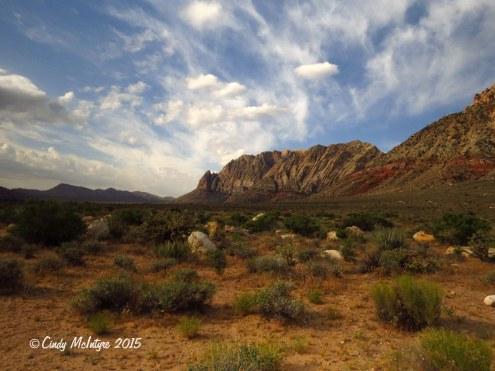 First-Creek-Trail,-Red-Rock-Canyon-NV-(10)-copy