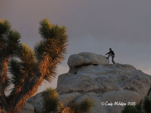 Early morning photographer above the campground