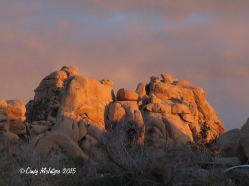 Hiddey-Valley-dawn,-Joshua-Tree-NP-CA-(3)-copy-2