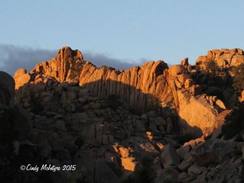 Hiddey-Valley-dawn,-Joshua-Tree-NP-CA-(40)-copy-2