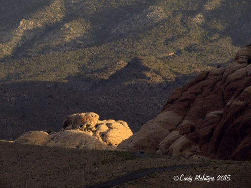 Red-Rock-Canyon-Conservation-Area,-NV-(15)-copy