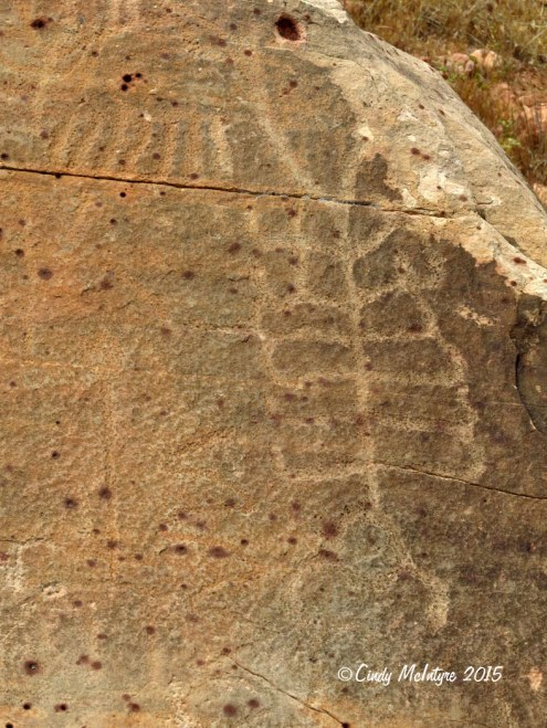 Rock-Spring-trail,-Red-Rock-Canyon-NV-(6)-copy