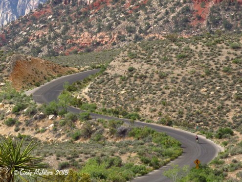 Scenic-Drive,-Red-Rock-Canyon-NV-(13)-copy