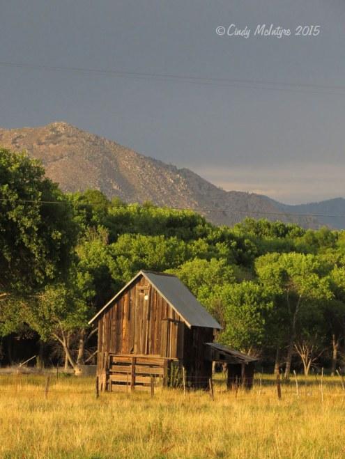 Outbuilding, Audubon Kern River Preserve