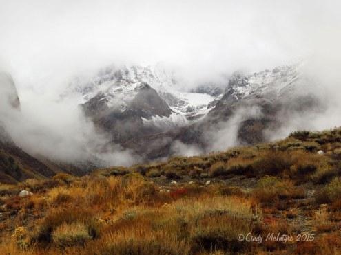 McGee-Creek-Canyon,-E-Sierras-CA-(81)-copy
