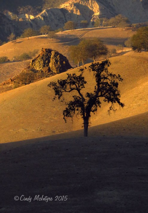 Outside-east-entrance-Pinnacles-NP-CA-(24)-copy