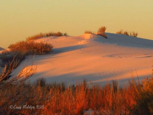 White-Sands-Natl-Mon-NM,-dawn-(13)-copy