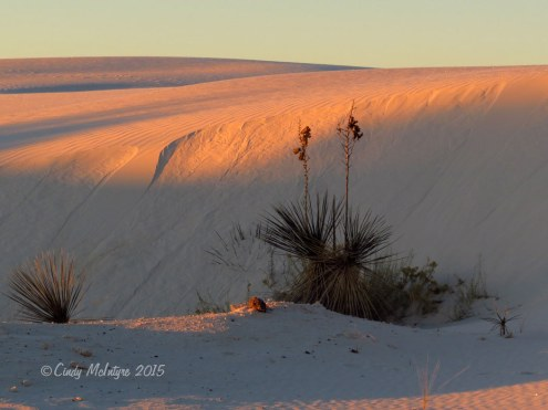 White-Sands-Natl-Mon-NM,-dawn-(22)-copy