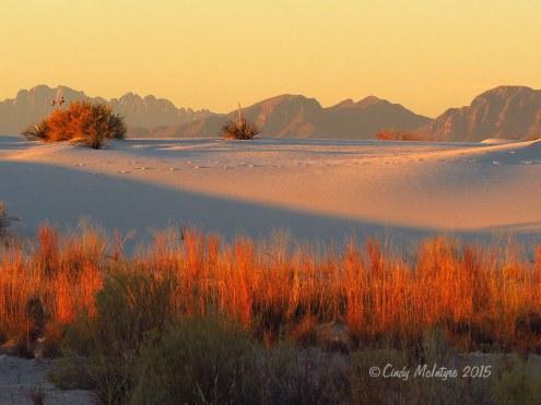 White-Sands-Natl-Mon-NM,-dawn-(28)-copy