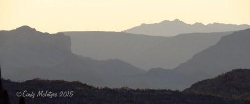 Ajo-Mt-Scenic-Drive,-Organ-Pipe-NM-AZ-(73)-copy