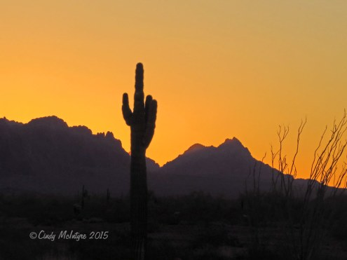 Kofa-NWR,-AZ--sunrise-(3)-copy