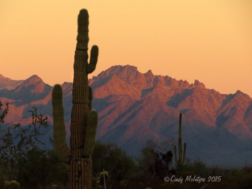Kofa-NWR,-AZ--sunrise-(6)-copy