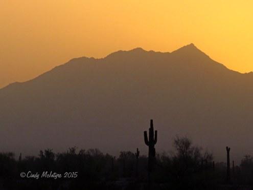 Kofa-NWR,-AZ--sunset-(9)-copy