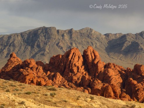 Valley-of-Fire-State-Park,-Nev-(128)-copy