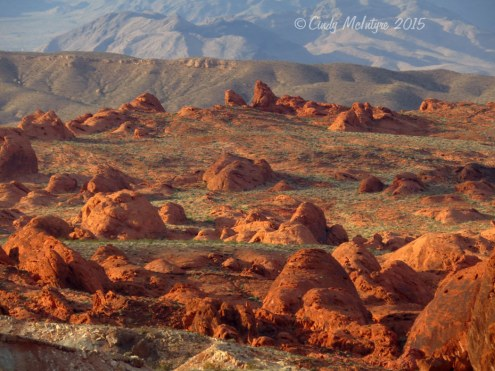 Valley-of-Fire-State-Park,-Nev-(162)-copy