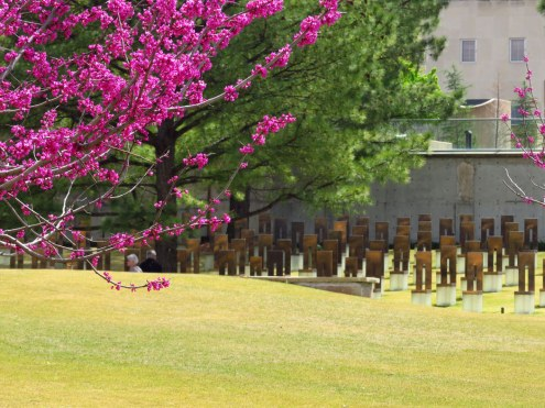 Redbud tree and memorial chairs at former site of Alfred P. Murrah Federal Building