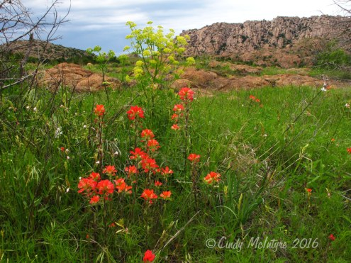 Post Oak trailhead, Wichita Mts. Wildlife Refuge, Okla.