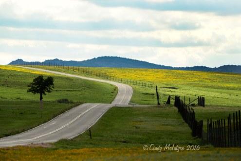 Wichita-Mts-refuge-OK-main-road-(1)-copy