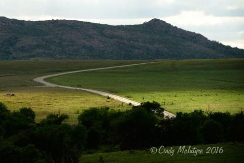 Wichita-Mts-refuge-OK-main-road-(9)-copy