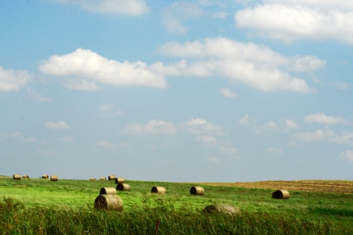 hay-bales-chester-ok-8-copy-2