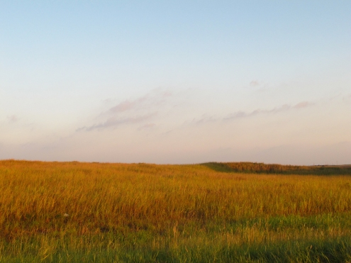 morning-grasslands-freedom-ok-4-copy