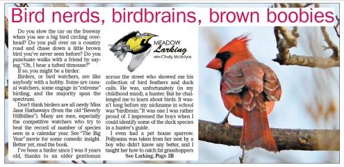 bird-nerds-3-10-16