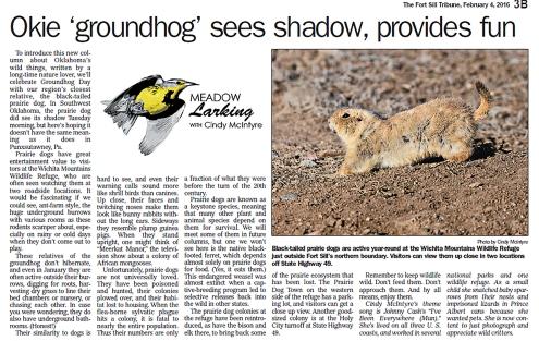 okie-groundhog-2-4-16