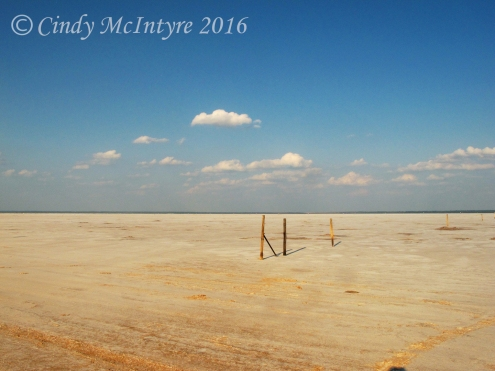 salt-plains-nwr-ok-6-copy
