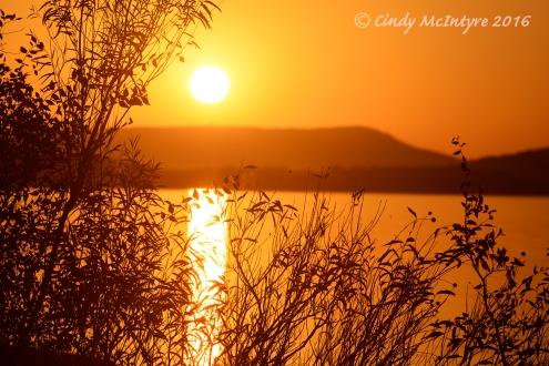 Lake Wister State Park, Oklahoma